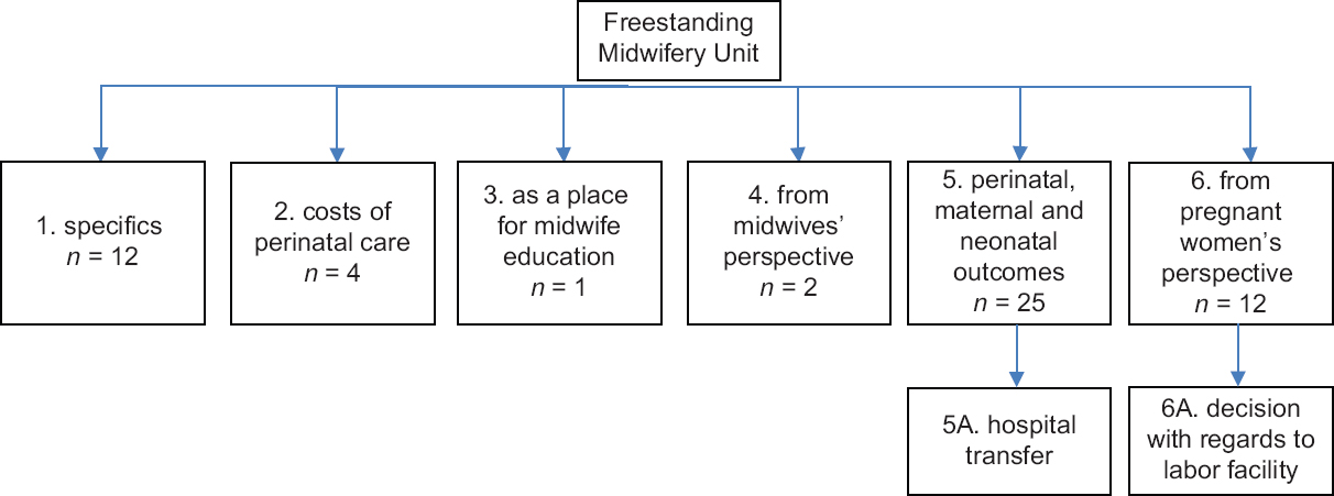 Figure 2: Freestanding midwifery-led midwife in literature - groups of research problems
